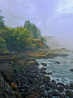 Juan De Fuca Straight Coast -- The Juan De Fuca Straight runs between Washington state on the south, and Vancouver Island on the north. Here. the rocky coast peeks out of the morning fog at Salt Creek Recreation Area in Washington.
